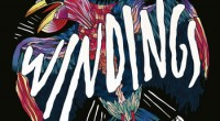 The new windings record I Am Not The Crow is one of the most anticipated Irish releases of the year – for me anyway – and it has just been...